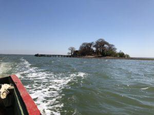 クンタ・キンテ島の画像 p1_34