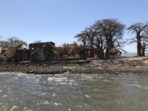クンタ・キンテ島の画像 p1_23